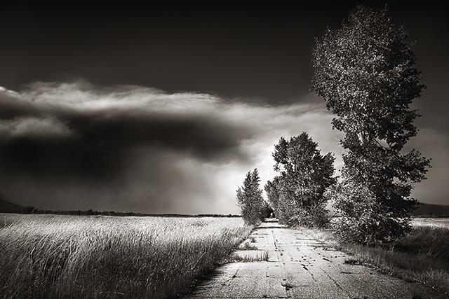 Road to Elysium