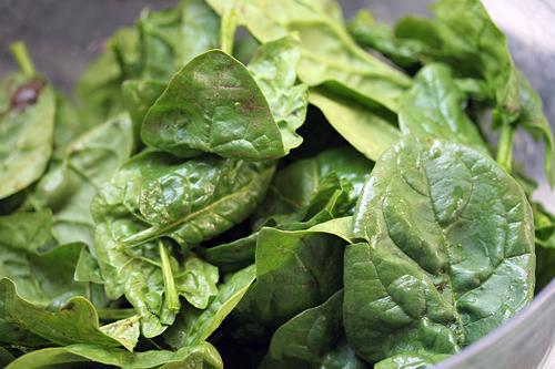 spinach pre-lavage