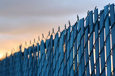 wikkidcoolblue fencejpg