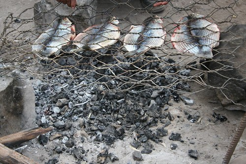 fileted fish in the grill