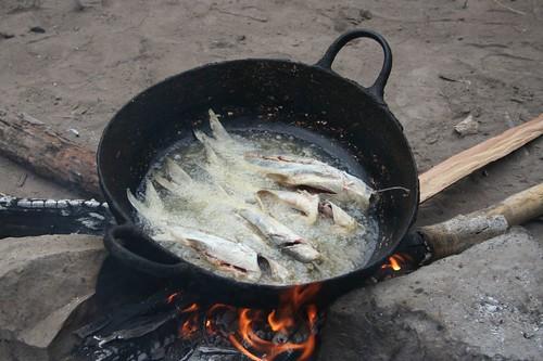 Fish fry whole