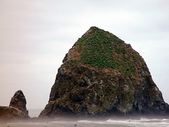 Monolith and Mini