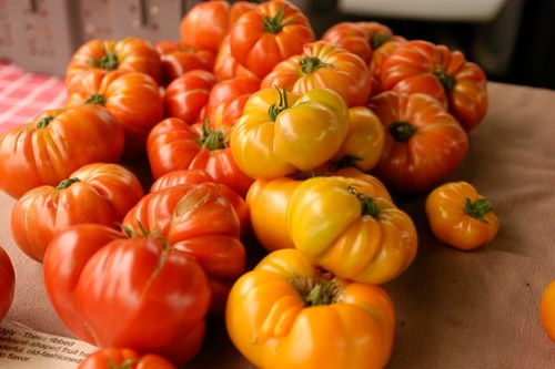 tomatoes from Kittitas II