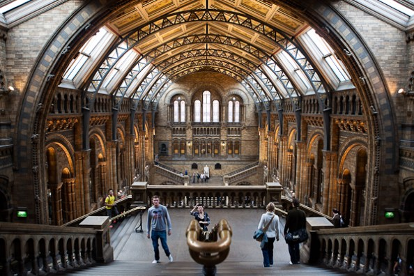 Grand hall du Natural History Museum