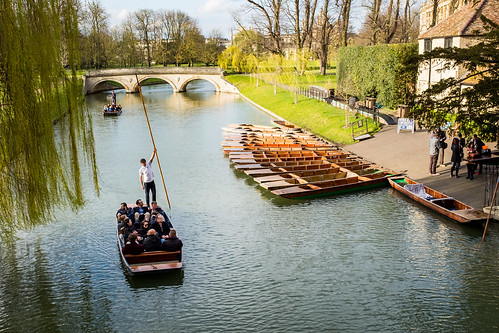 Punting along the River Cam