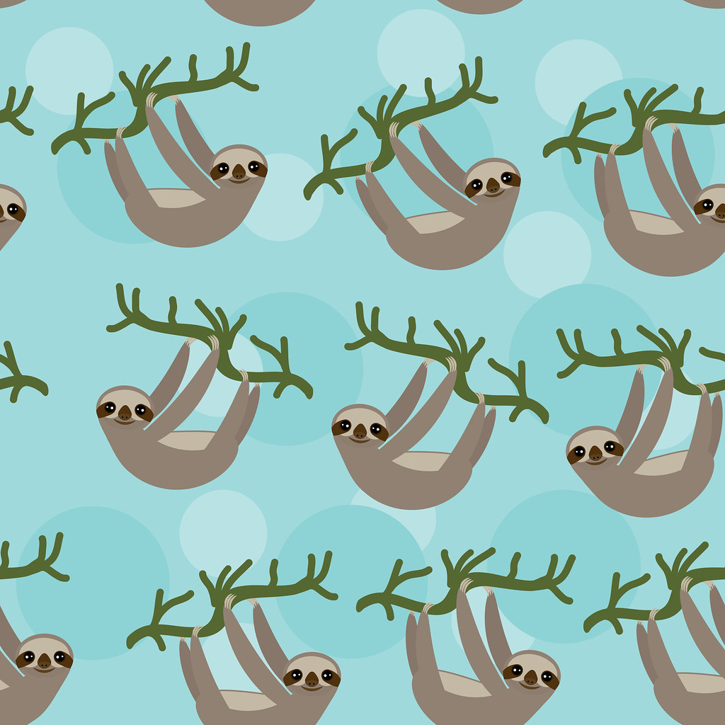Cute Sloth Wallpaper The World S Best Photos Of Bradypus Flickr Hive Mind