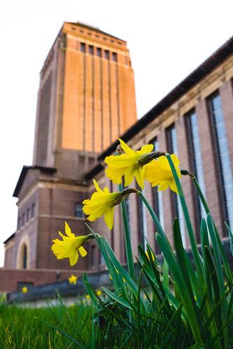 University Library in Spring