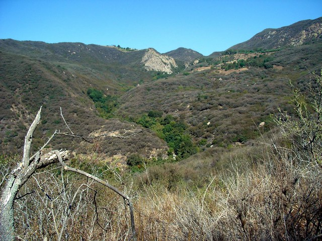 Solstice Cyn Trails 008
