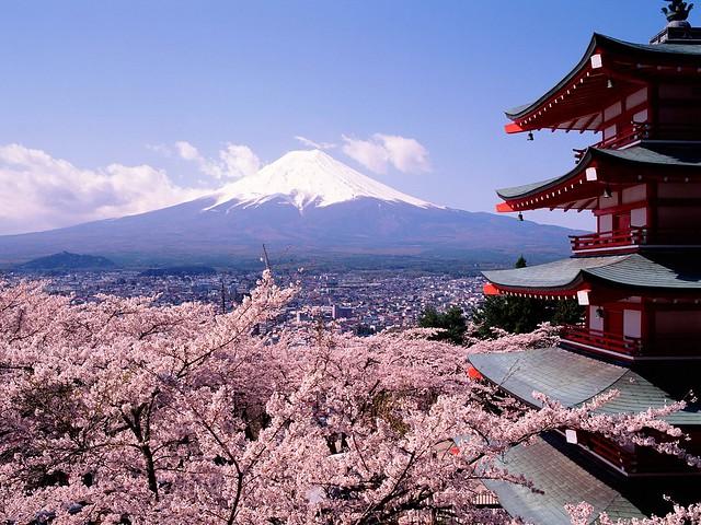 une ann u00e9e sabbatique au japon pour parler anglais et japonais