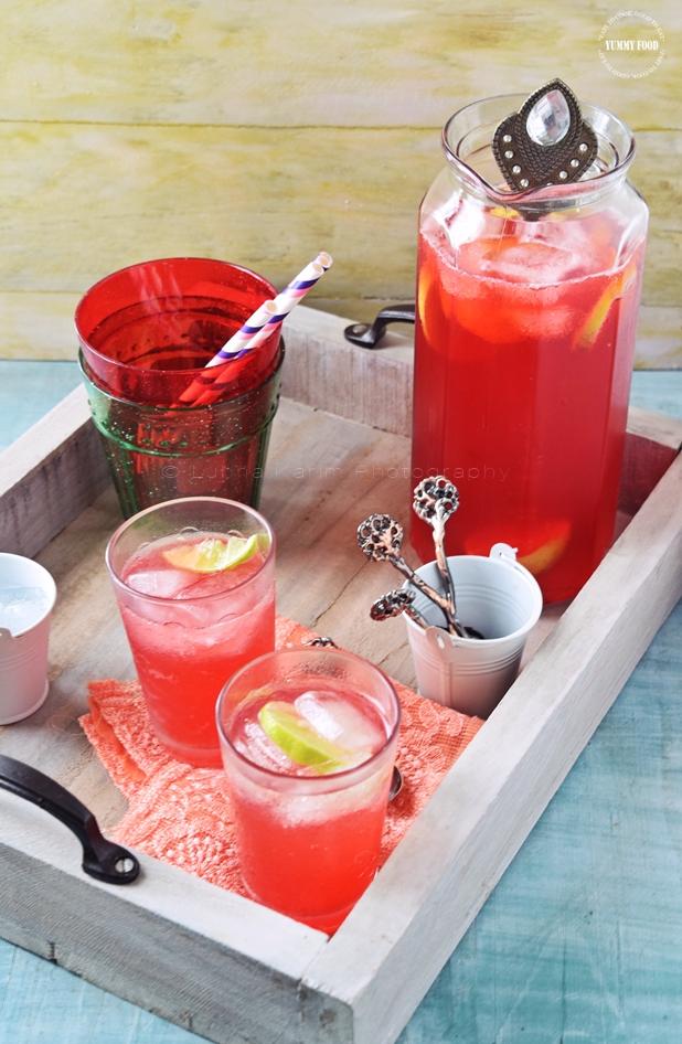 Summer Cranberry Lemon Fizz