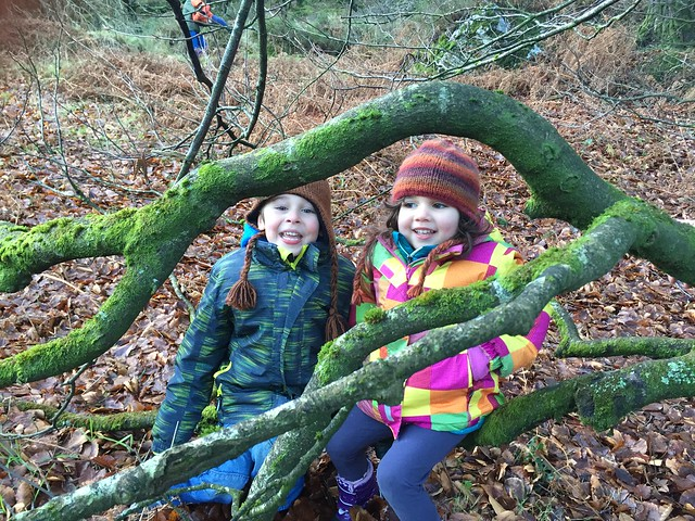 children loving the family day out even in the chilly Irish winter!