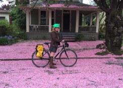 Portland | Pedal Bike Tours