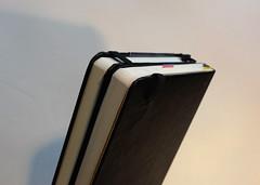Foray Notebook 12