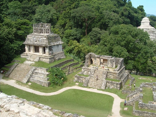 Palenque, mexico, can offer great family holidays with just a bit of planning. This is the view from one for the higher hills in the archaeological site