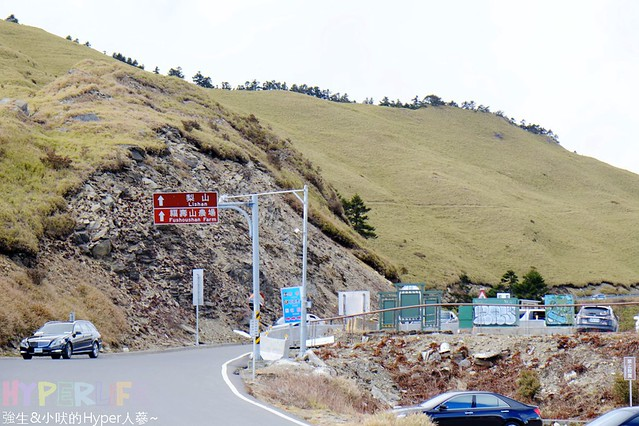 合歡山&武陵農場 (2)