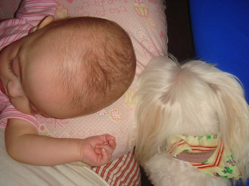 sleeping friends
