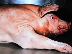 abattoir chophouse - hello mr. piggy