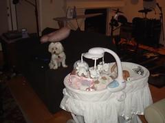 The baby! needs! help!