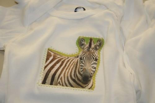 zebra, pre-ribbon