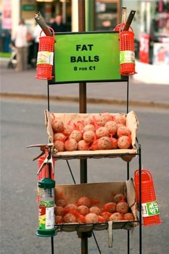 Fat Balls 8 for a pound