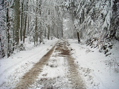 Ploughed bike route