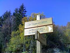 Le Tiocan
