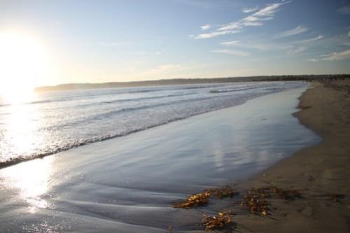 beach at coronado island