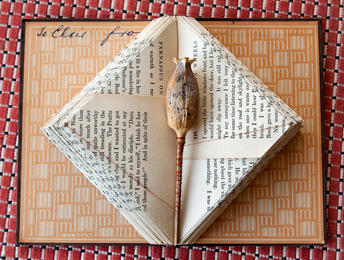 Altered Book- Let the World Speak for Itself