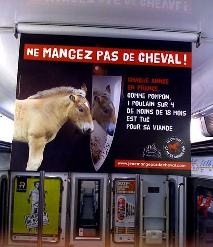 ne mangez pas de cheval!