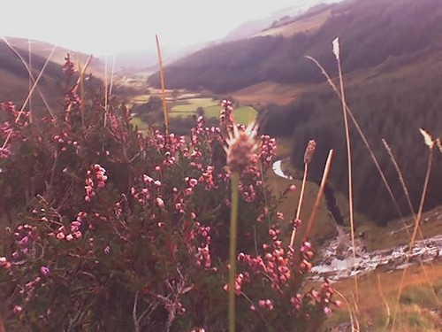 Wicklow Glendalough