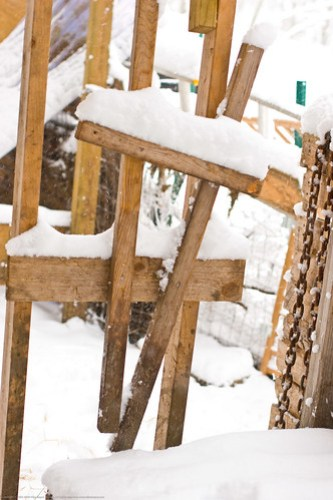 Humble Garden 2010: frozen stanchion
