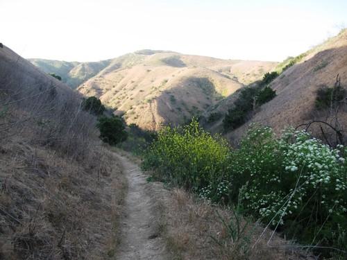 Chino Hill Sunset Hike