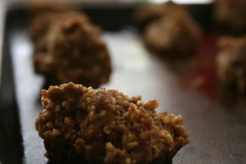 Choco/oatmeal cookies