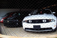 Ford Mustang GT & Chevrolet Camaro SS