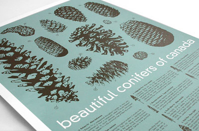 Sharilyn conifer poster