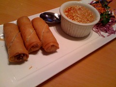 The Thai Veggie Rolls were really good at the Thai Elephant