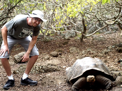 "holy crap, these tortoises are huge! • <a style=""font-size:0.8em;"" href=""http://www.flickr.com/photos/37718677333@N01/12245574445/"" target=""_blank"">View on Flickr</a>"