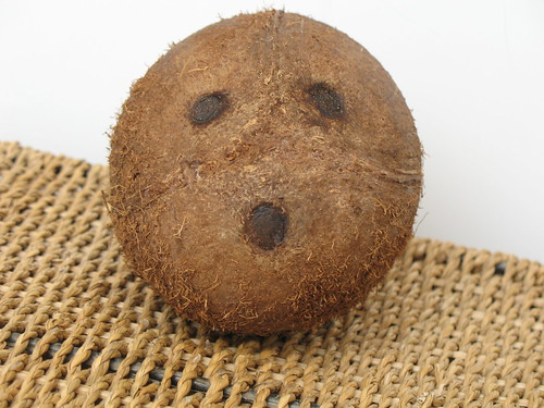Coconut face