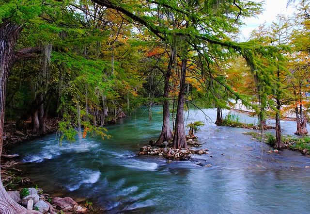 Free Fall Color Wallpaper The Guadalupe River Quot The River Delights To Lift Us Free