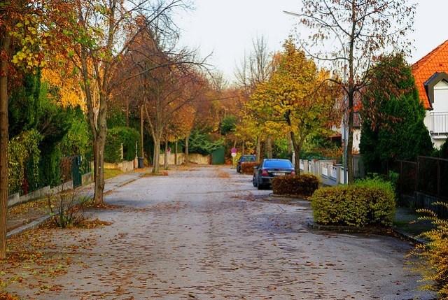 Baden bei Wien, herbstliche Straße