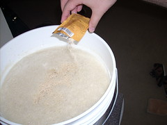Adding yeast to the fermenter
