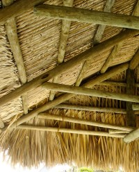 Tiki Hut Canopy