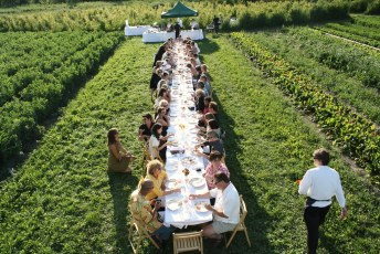 Outstanding in the Field At North Arm Farm | Pemberton