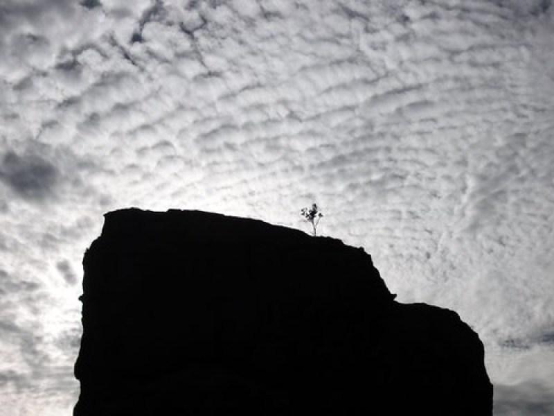 cederberg silhouette