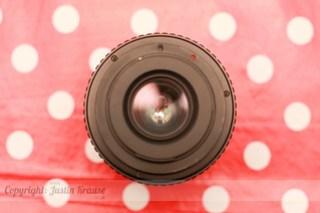 Vivitar 500mm f-8 Mirror Lens - Justin Krause-5