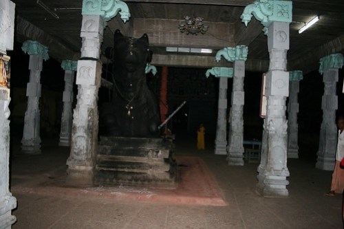 Nandi moved to his right. Thirupungur