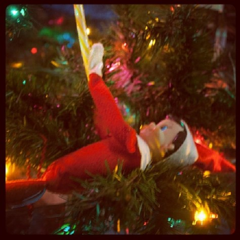 Not quite wrecking ball #TylerElf #tylertheelf #elfontheshelf #tylershelfelf