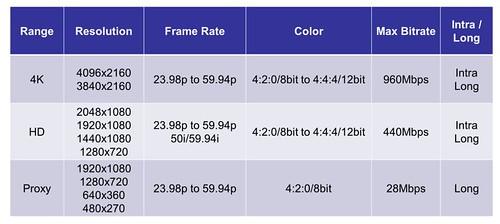 XAVC Format