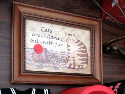 Cats are children, only with fur