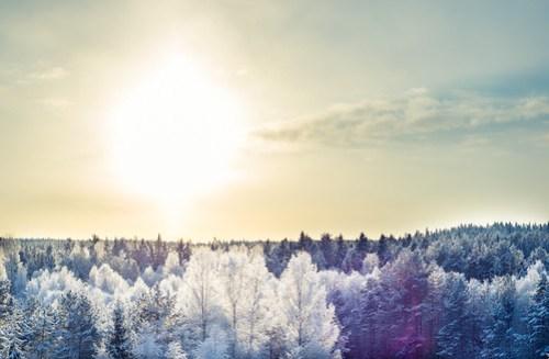 Cold Winter Hymn